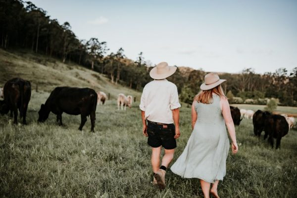 The Food Farm owners Tim and Hannah walking through a paddock with cows